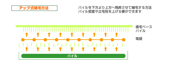 UP-Method(アップメソド)